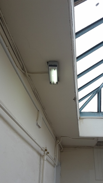 image of a edinburgh tenement stair light in situ with a missing shade